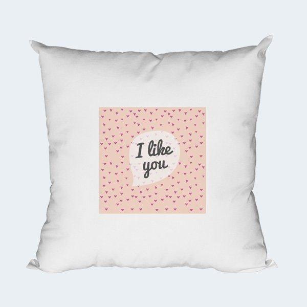 004-Cushion-Cover
