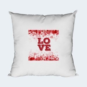 006-Cushion-Cover