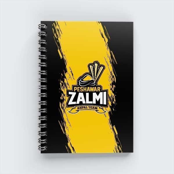PZ-Notebook-007