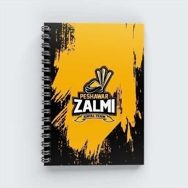 PZ-Notebook-009